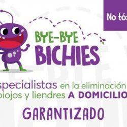 Bye Bye Bichies